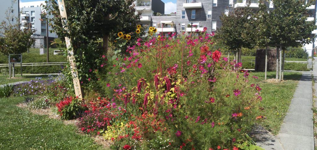 Le jardin éphémère de Fleurs de pavé lauréat !